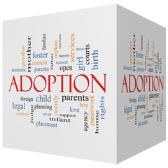 Adoption 3D cube Word Cloud Concept