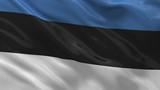 Flag of Estonia waving in the wind - seamless loop