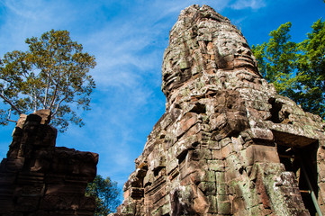 Ta Prohm castle