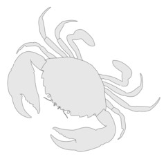 cartoon image of crustacean animal - crab