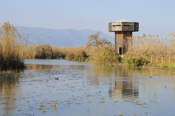 Lake Agamon and wooden tower in the Hula Valley