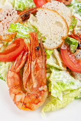 Tasty shrimp salad