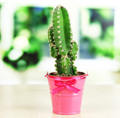 Beautiful cactus in bright pail on wooden windowsill