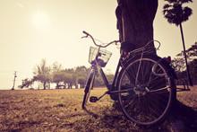 Vintage attente de vélos près de l'arbre
