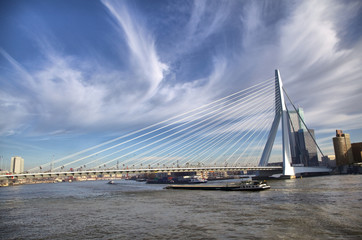 Erasmus Bridge in Rotterdam on the Nieuve-Maas River, Rotterdam,