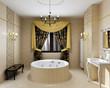 Luxury bathroom interior in daylight