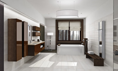 Modern bathroom interior in daylight