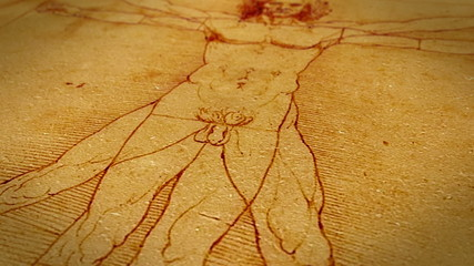 Dolly shot of Leonardo da Vinci Vitruvian Man drawing