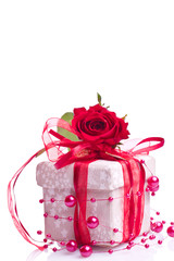 a withe box and red rose on withe background