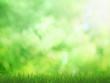 Summer field background
