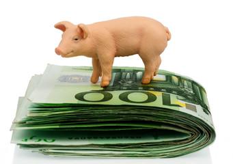 Schwein auf Eurogeld Banknoten