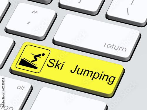 Ski Jumping4