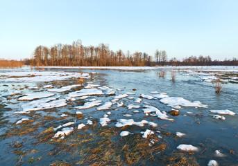 Spring flood. Sukhodrev river, Kaluga region, Russia