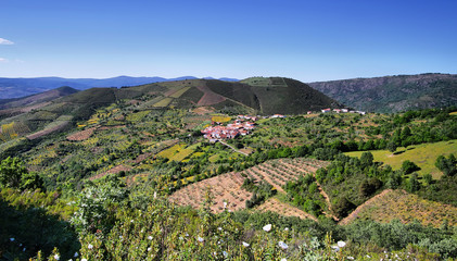 Plantation fields between villages of Sotomayor and Lagunilla