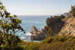 Pfeiffer Big Sur