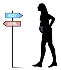 illustrazione di donna incinta:maschio o femmina?