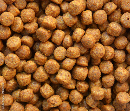 Close up of brown dog food