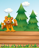 A playful bear above the signboard near the pine trees