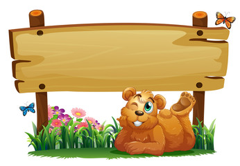 A cute bear under the empty wooden signboard