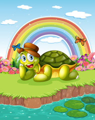 A turtle at the pond with a rainbow in the sky