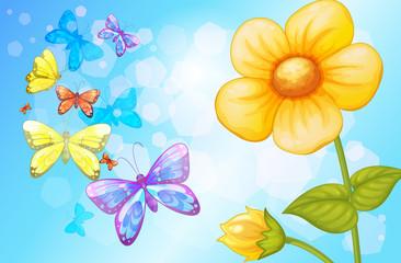 A big flower with butterflies