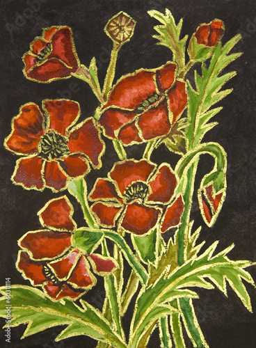 Poppies on black background, painting