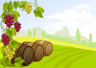 grapes, barrels and rural landscape