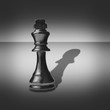 Black and white image of a chess piece