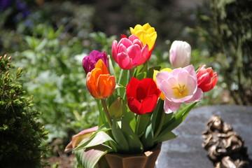 Friedhof im Frühling
