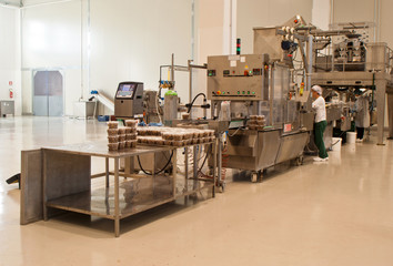production of olives. packing machine