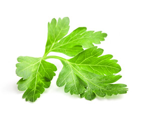 Parsley leaves isolated on white