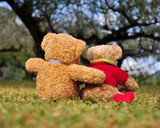 Two teddy bears sitting in the garden with love. Concept about l