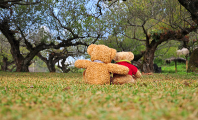 Two teddy bears sitting in the garden. Concept about love and re