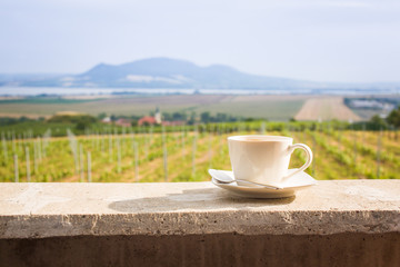 Coffee cup with a vineyard and peaceful landscape