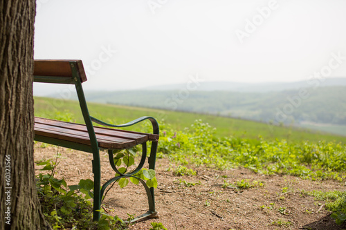 Lonely bench near tree with hills in the front