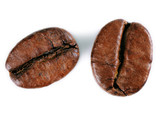 A close-up picture of coffee beans on a white background