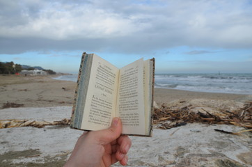 Winter time with a good book on the beach