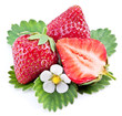 Strawberry fruit isolated on a white.