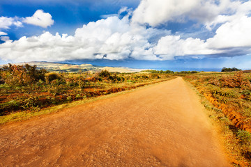 Small road in Easter Island