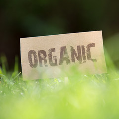 Close-up of an Organic sign in green grass