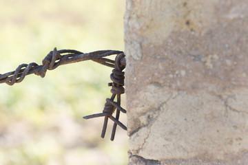espina oxidada