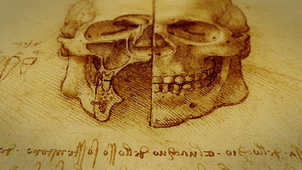 A dolly shot of Leonardo da Vinci Skull sketch.