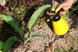 traitement anti-pesticide poster