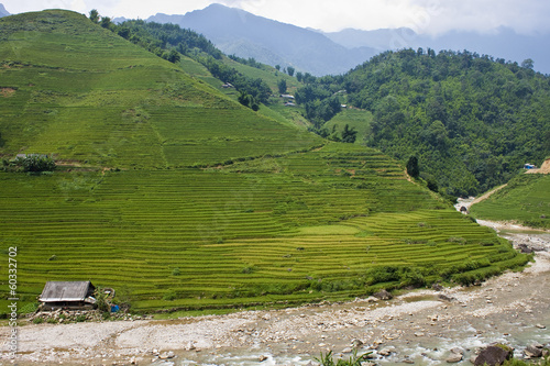 Paddy fields and village houses in a valley in northern Vietnam