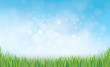 Vector nature background blue sky and green grass.