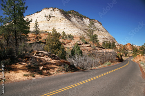 Road in the USA, Zion NP, USA