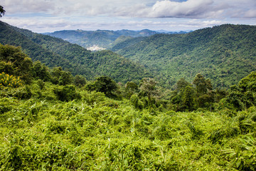 View at Khao Yai National Park, Thailand