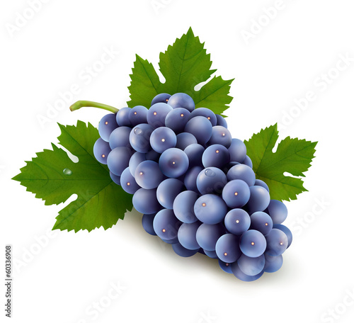 Ripe grapes with leaf. Vector