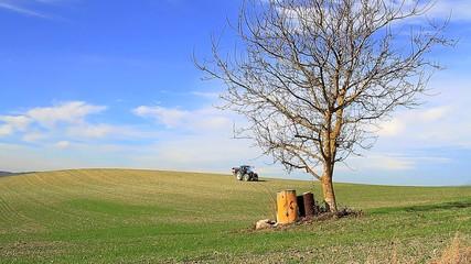Tractor azul 1
