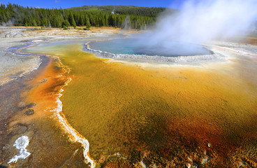 thermal pool geyser, yellowstone national park, wyoming,usa